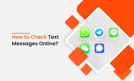 How to check text messages online?.jpg